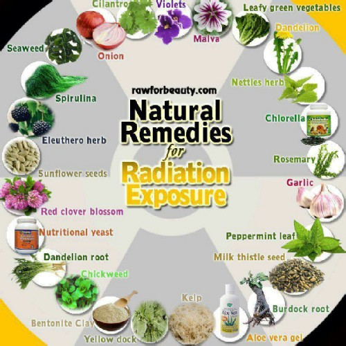foods herbs for radiation poisoning